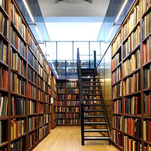 Библиотеки Почепа