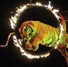 Цирки в Почепе